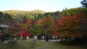 高台寺庭紅葉
