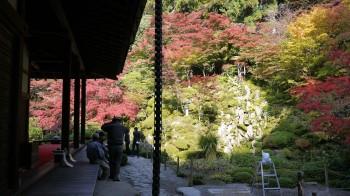 金剛輪寺庭園