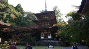 西明寺三重塔