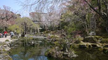 竹林院庭園
