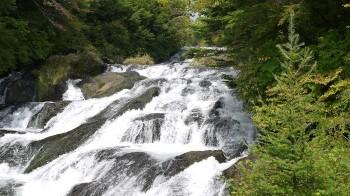 龍頭の滝上流