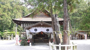 建部大社拝殿