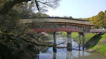 宇佐神宮屋根橋