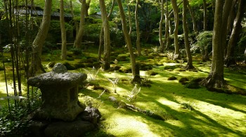 祇王寺庭園