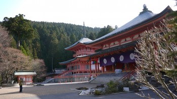 東塔と阿弥陀堂