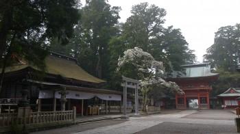 鹿島神宮拝殿・楼門