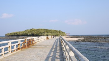 青島全景2