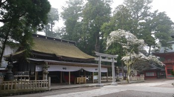 鹿島神宮拝殿