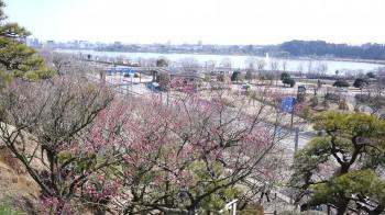 偕楽園から湖・市内の眺め