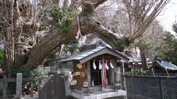 海南神社龍神社