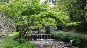 日吉神社大宮橋