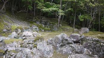 苔寺枯山水