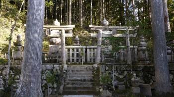蓮華定院墓