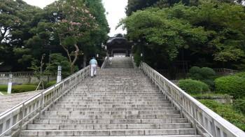 宇都宮二荒山神社参道