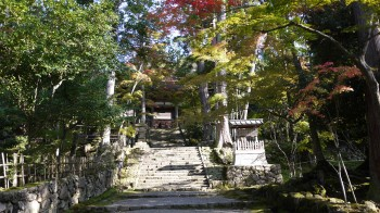 西明寺参道