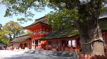 宇佐神宮本殿