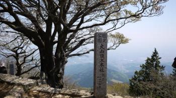 山頂本社から東側