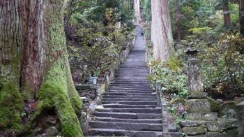室生寺奥の院への参道