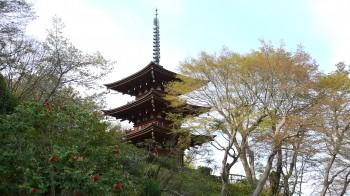 岡寺三重塔