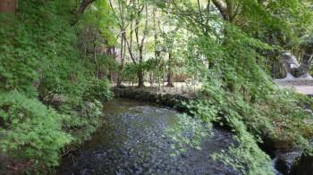 上賀茂の川