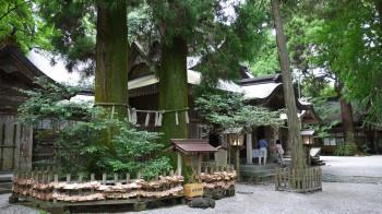 高千穂神社夫婦杉と本殿