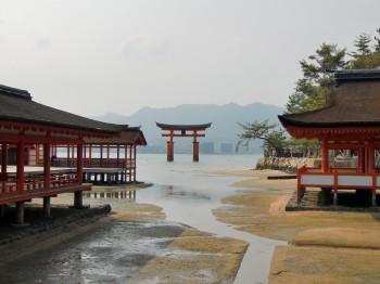 厳島神社社殿から鳥居