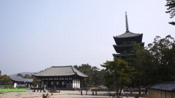 興福寺境内