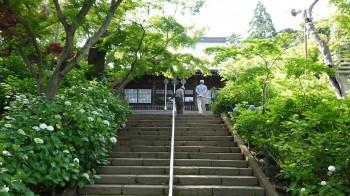 本土寺本堂