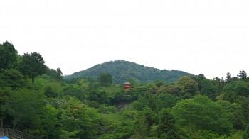 清水寺子安の塔遠景