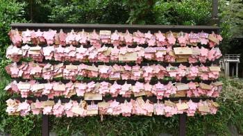 櫻木神社絵馬