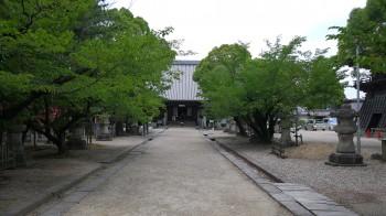 大樹寺境内