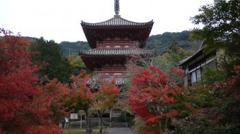 太山寺三重塔